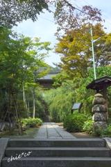 鎌倉-254
