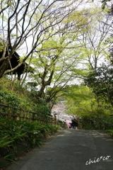 鎌倉-336