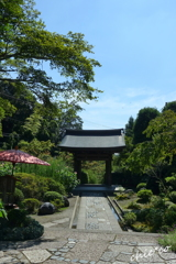 鎌倉-231