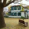 山手イタリア山庭園-236