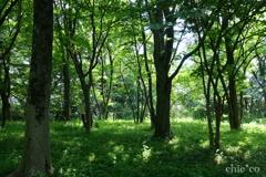 久良岐公園-214