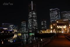 Yokohama-204