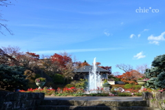 強羅公園-098