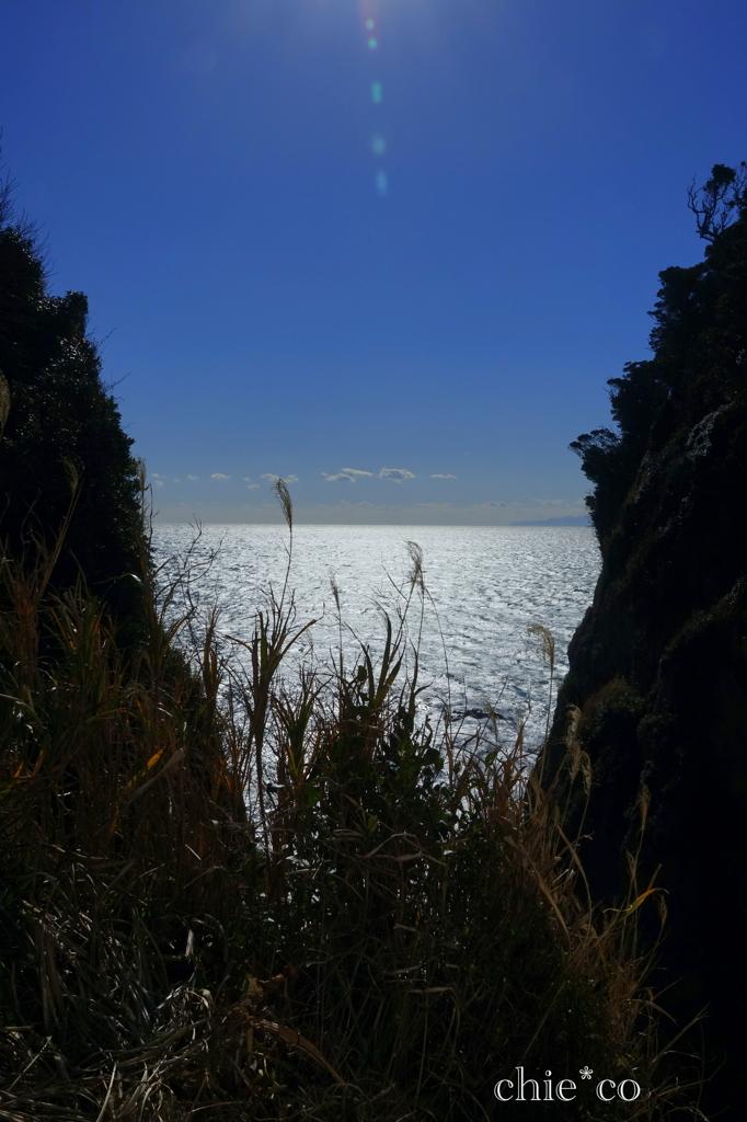 江の島-314