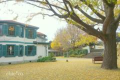 山手イタリア山庭園-251