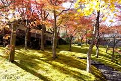 箱根美術館-148