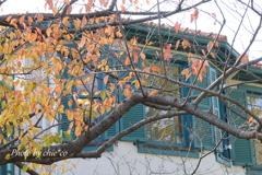 横浜山手西洋館-483