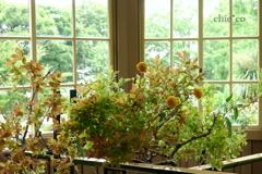 花と器のハーモニー2019-369