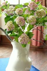 花と器のハーモニー2019-380