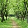 久良岐公園-137