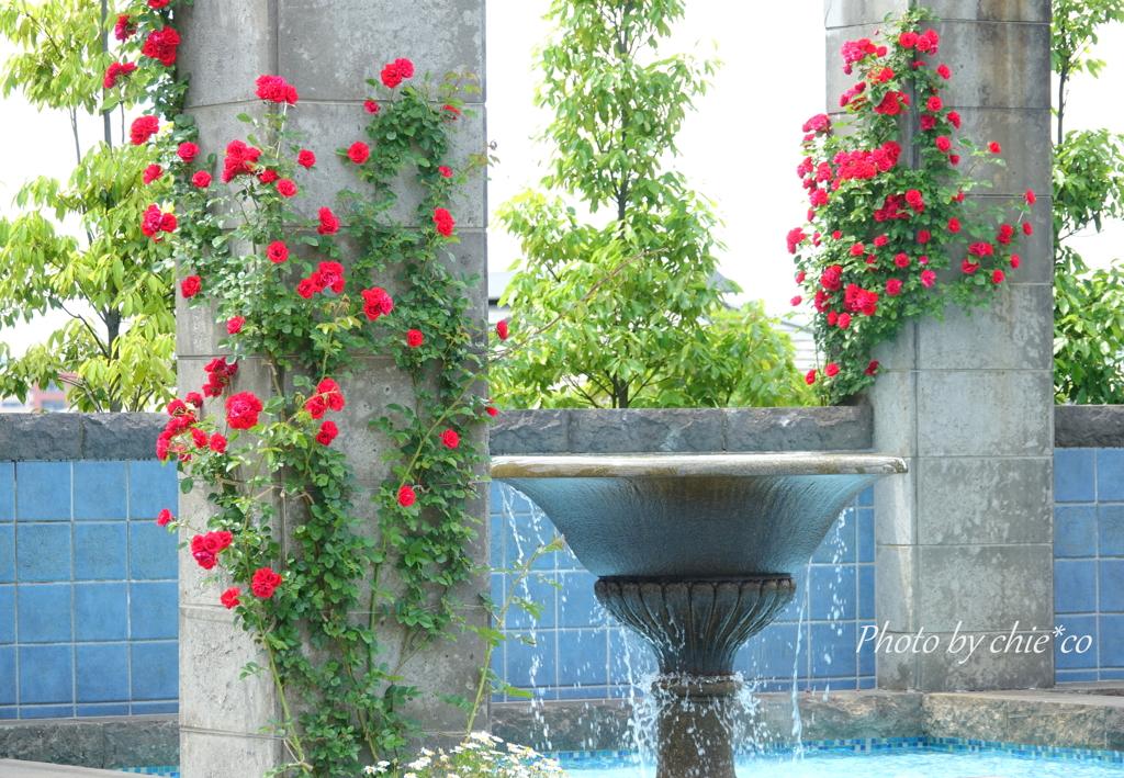 イタリア山庭園-151