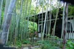 鎌倉-194