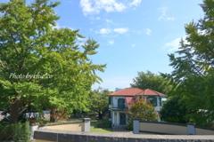 イタリア山庭園-259