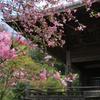 鎌倉-293