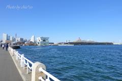 Yokohama-126