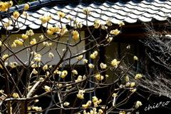 北鎌倉-340