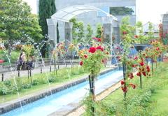 イタリア山庭園-154