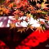箱根美術館-159