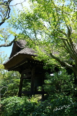 北鎌倉-373