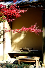 一条恵観山荘-110
