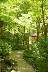 一条恵観山荘-271