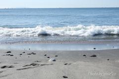鎌倉の海辺-336