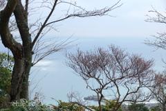 吾妻山公園-217