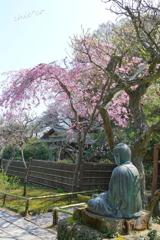 鎌倉-454