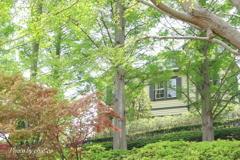 石川町~イタリア山庭園-220