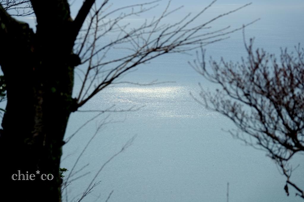 吾妻山公園-216