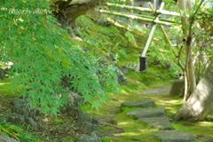 鎌倉-207