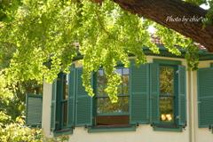 イタリア山庭園-254
