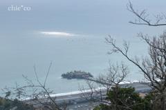吾妻山公園-220