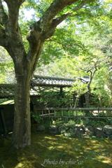 北鎌倉-227