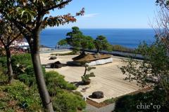 世界最大の盆栽「鳳凰の松」と・・相模湾を望む風景。。
