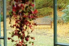 山手イタリア山庭園-311