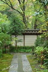 鎌倉瑞泉寺。。-096