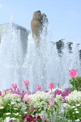 山下公園の花たち-010
