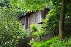 円覚寺-250
