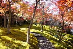 箱根美術館-147