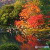 曹源池庭園2