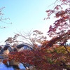紅葉狩り日和