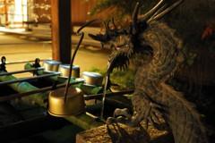 夜の晴明神社 龍