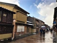 金沢 牡丹雪 (息子撮影)