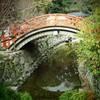 橋の下で水占