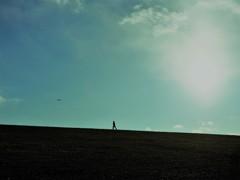 走ってま~す。飛んでま~す。どこ?どこ?