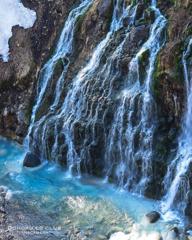 春を感じる白髭の滝
