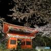 雨引観音 桜と仁王門