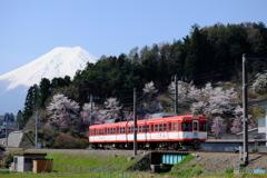 富士山と富士急行1000形