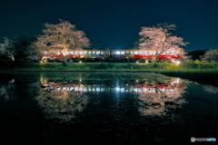 Itabu Station at Night